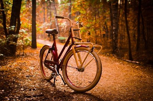 езда на велосипеде осенью 10 советов монтего барроу.jpg