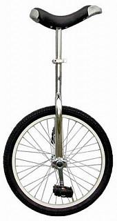 """Уницикл 20"""" (одноколесный велосипед) серебристый"""